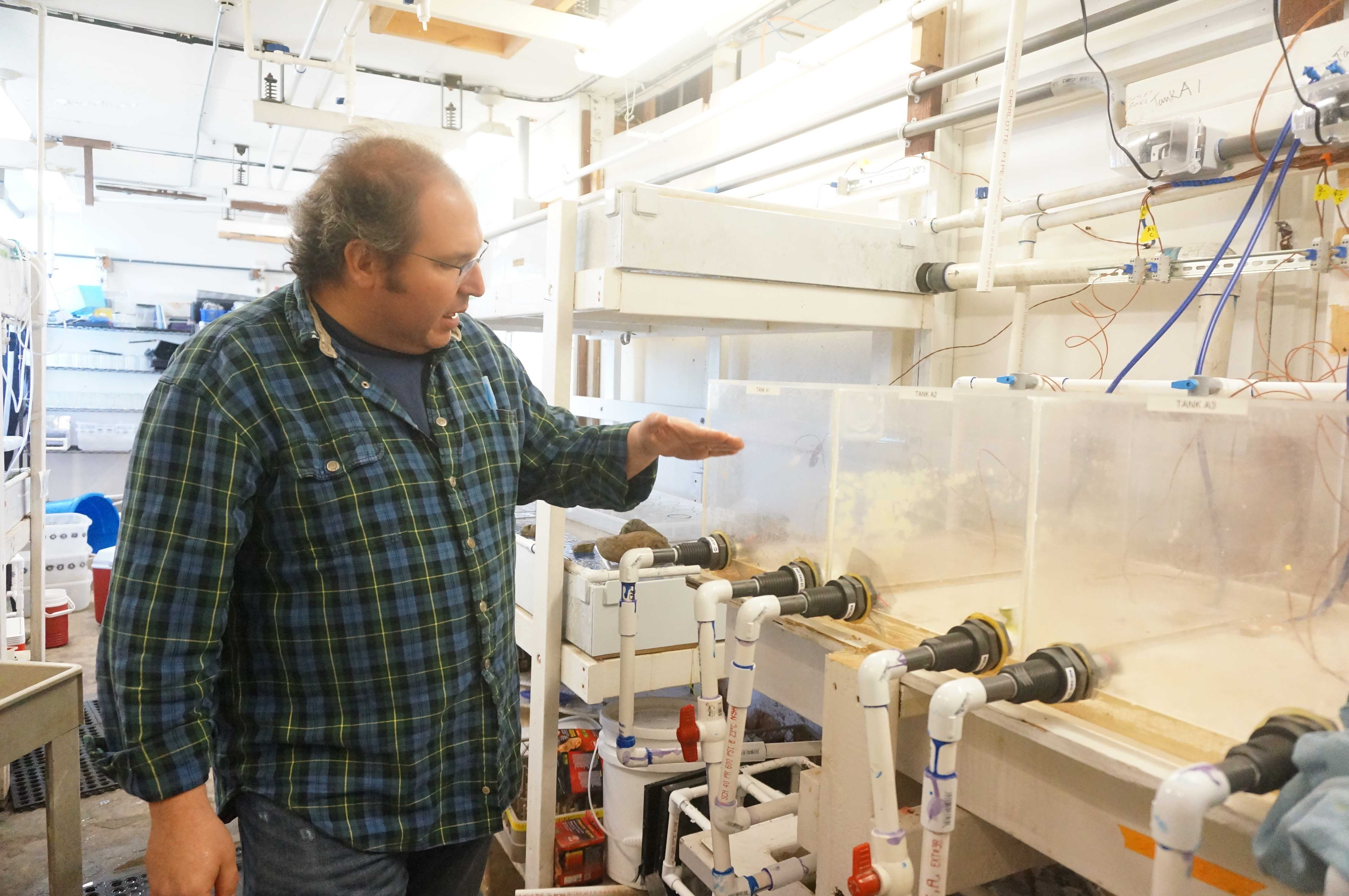 Jonathan Stillman shows how the automatic system of aquarium works in Romberg Tiburon Center on March 31.