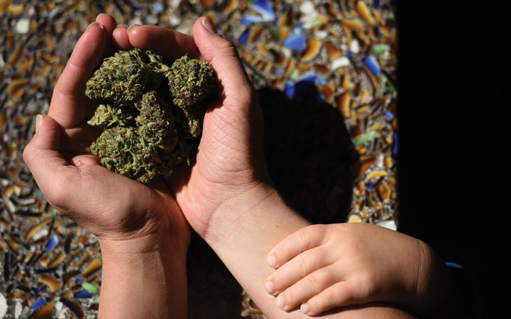 Leah's son touches her arm as she holds marijuana flowers.