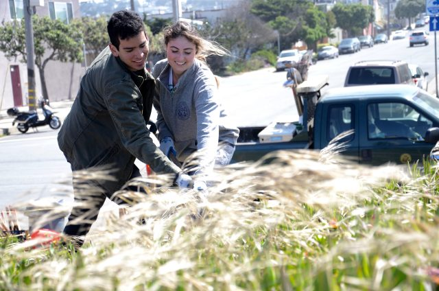 Marc Hernandez with a fellow Eco Life member clean up dead grasses in front of Ocean Beach in San Francisco on May 6, 2017.