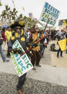Brock Dolman (left) and Kerry Brady (right), dressed as a salamander and beaver rock out to live music at the Civic Center downtown San Francisco at the March for Science on Apr. 22, 2017. (Ryan Zaragoza  Xpress).