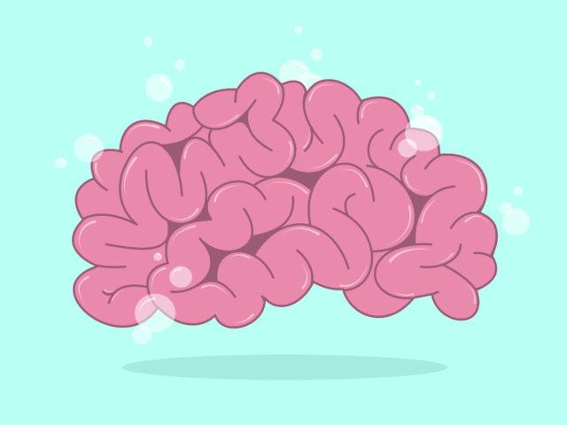 My OCD Brain