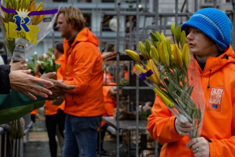 Tulips are stacked and handed out by volunteers in order to adhere to San Francisco health regulations spurred by recent COVID-19 developments during the American Tulip Festival at Union Square on March 7, 2020 (Photo by William Wendelman)